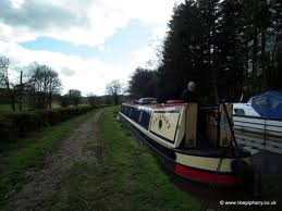 boat and hedge